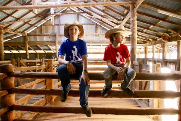 Country As shirts in the shearing shed