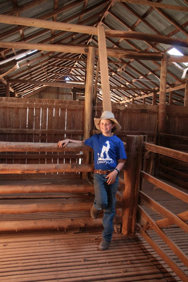 Blue Country As shirt in the shearing shed